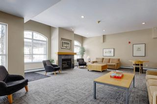 Photo 23: 102 25 Richard Place SW in Calgary: Lincoln Park Apartment for sale : MLS®# A1106897