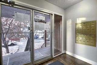 Photo 28: 402 534 20 Avenue SW in Calgary: Cliff Bungalow Apartment for sale : MLS®# A1065018
