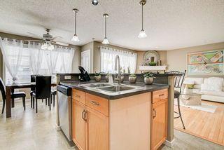 Photo 13: 3441 28 Street in Edmonton: Zone 30 House for sale : MLS®# E4248007