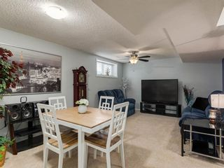Photo 34: 180 SILVERADO Way SW in Calgary: Silverado Detached for sale : MLS®# A1016012