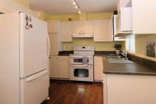 "Photo 7: 56 21928 48 Avenue in Langley: Murrayville Townhouse for sale in ""Murrayville Glen"" : MLS®# R2585896"