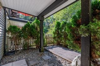 """Photo 28: 141 6747 203 Street in Langley: Willoughby Heights Townhouse for sale in """"Sagebrook"""" : MLS®# R2621016"""