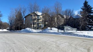 Photo 2: 404 21 Dover Point SE in Calgary: Dover Apartment for sale : MLS®# A1068387