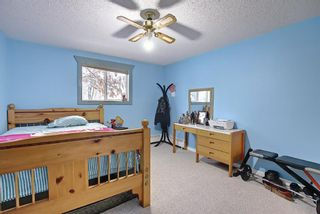 Photo 22: 110 11 Dover Point SE in Calgary: Dover Apartment for sale : MLS®# A1096781