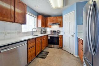 Photo 11: 10 Martha's Meadow Bay NE in Calgary: Martindale Detached for sale : MLS®# A1124430