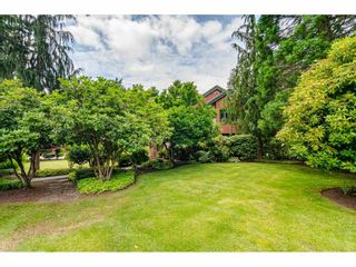 Photo 36: 23495 52 Avenue in Langley: Salmon River House for sale : MLS®# R2474123