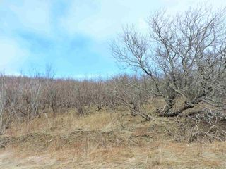 Photo 4: Gilbert Road in Parrsboro: 102S-South Of Hwy 104, Parrsboro and area Vacant Land for sale (Northern Region)  : MLS®# 202107607
