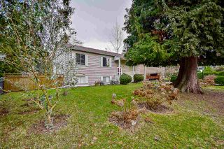 "Photo 20: 10969 86A Avenue in Delta: Nordel House for sale in ""Nordel"" (N. Delta)  : MLS®# R2135057"