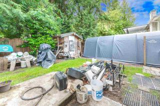 """Photo 19: 22610 LEE Avenue in Maple Ridge: East Central House for sale in """"Lee Avenue Estates"""" : MLS®# R2591570"""