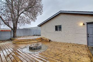 Photo 43: 312 Mt Aberdeen Close SE in Calgary: McKenzie Lake Detached for sale : MLS®# A1046407