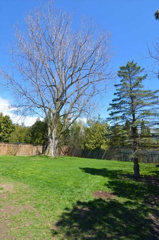 Photo 8: 30 Springbrook Road: Cobourg House (Bungalow) for sale : MLS®# X5227436