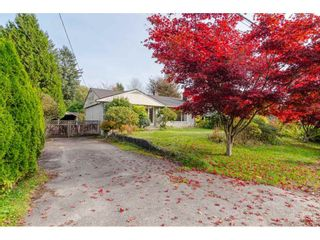 Photo 2: 11690 CARR Street in Maple Ridge: West Central House for sale : MLS®# R2414799