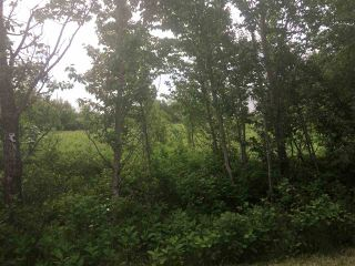 Photo 5: #615 56315 Rge Rd 112A: Rural St. Paul County Rural Land/Vacant Lot for sale : MLS®# E4203726