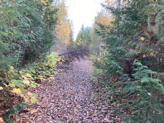 Photo 13: DL3592 & DL4084 1020 Forest Service Road in Seymour Arm: syemour arm Land Only for sale (shuswap)  : MLS®# 10241424