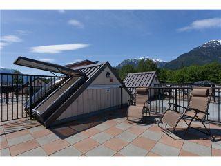 Photo 12: # 316 41105 TANTALUS RD in Squamish: Tantalus Condo for sale : MLS®# V1064218