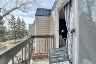 Photo 32: 306 315 Heritage Drive SE in Calgary: Acadia Apartment for sale : MLS®# A1090556