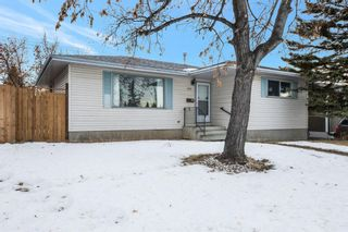 Photo 24: 255 Maitland Crescent NE in Calgary: Marlborough Park Detached for sale : MLS®# A1061446