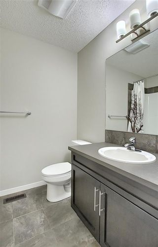 Photo 37: 484 COPPERPOND BV SE in Calgary: Copperfield House for sale : MLS®# C4292971