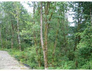 """Photo 10: 78 24185 106B Avenue in Maple Ridge: Albion 1/2 Duplex for sale in """"TRAILS EDGE"""" : MLS®# V810264"""