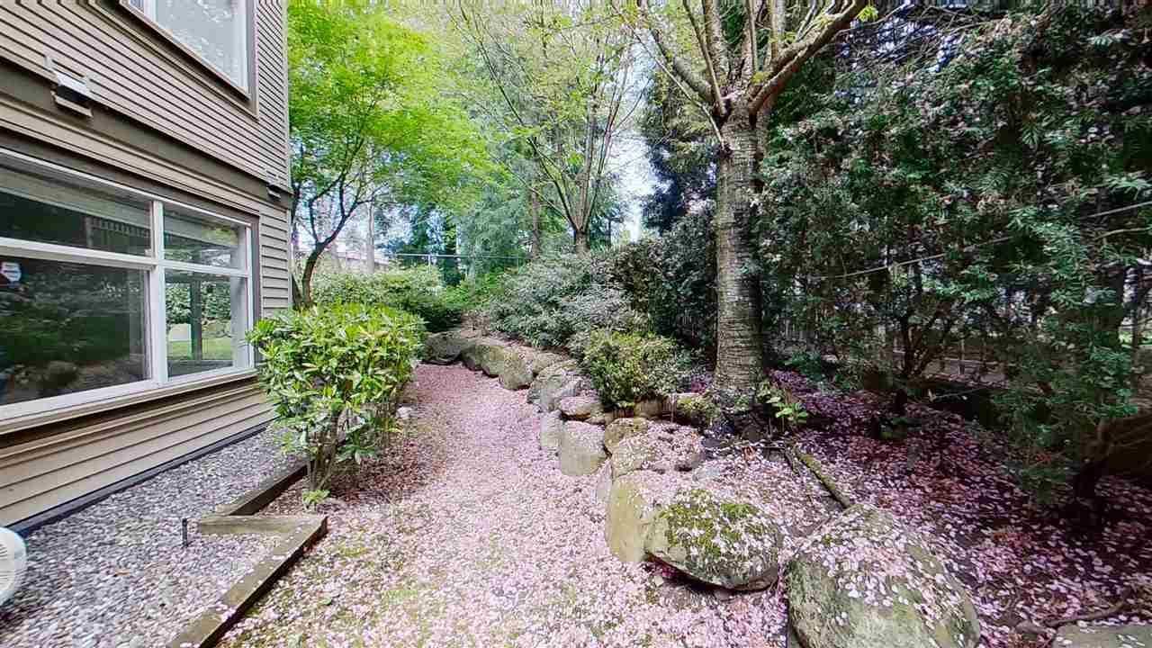 """Photo 35: Photos: 116 14885 105 Avenue in Surrey: Guildford Condo for sale in """"REVIVA"""" (North Surrey)  : MLS®# R2574705"""