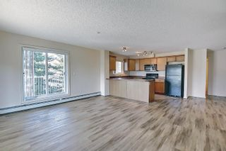 Photo 16: 201 4407 23 Street in Edmonton: Zone 30 Condo for sale : MLS®# E4254389