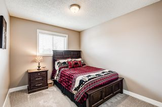 Photo 24: 173 Martinglen Way NE in Calgary: Martindale Detached for sale : MLS®# A1144697