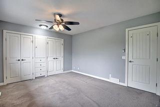 Photo 24: 23 Castlefall Way NE in Calgary: Castleridge Detached for sale : MLS®# A1141276