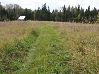 Photo 10: 5994 QUESNEL-HIXON Road in Quesnel: Quesnel - Rural North House for sale (Quesnel (Zone 28))  : MLS®# N214417