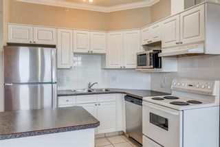 Photo 5: 304 1777 1 Street NE in Calgary: Tuxedo Park Apartment for sale : MLS®# A1103048