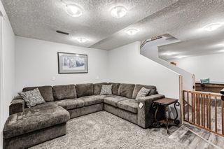 Photo 28: 5 Templeton Bay NE in Calgary: Temple Semi Detached for sale : MLS®# A1113362
