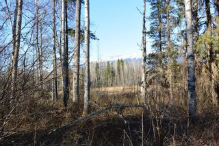 Photo 13: LOT A KLOECKNER Road in Smithers: Smithers - Rural Land for sale (Smithers And Area (Zone 54))  : MLS®# R2598861