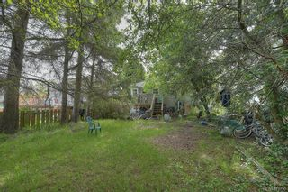 Photo 6: 1610 Stanley Ave in : Vi Fernwood House for sale (Victoria)  : MLS®# 871790