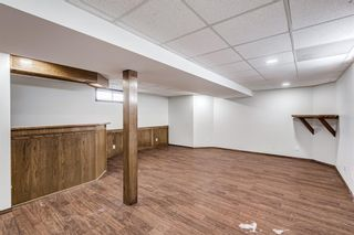 Photo 27: 87 Applebrook Circle SE in Calgary: Applewood Park Detached for sale : MLS®# A1132043