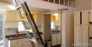 Photo 49: 544 Paradise St in : Es Esquimalt House for sale (Esquimalt)  : MLS®# 877195