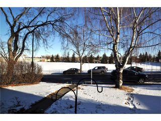 Photo 26: 3031 25 Street SW in Calgary: Richmond House for sale : MLS®# C4092785