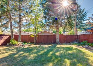 Photo 36: 8519 Ashworth Road SE in Calgary: Acadia Detached for sale : MLS®# A1123835