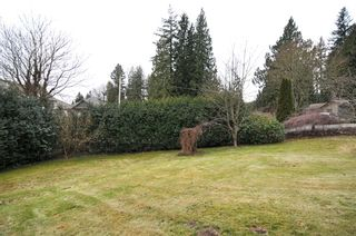 Photo 5: 32437 EGGLESTONE Avenue in Mission: Mission BC House for sale : MLS®# F1028384