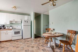 Photo 13:  in Edmonton: Zone 22 House for sale : MLS®# E4254166