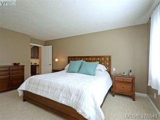 Photo 11: 4944 Haliburton Pl in VICTORIA: SE Cordova Bay House for sale (Saanich East)  : MLS®# 755988