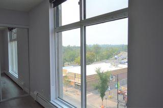 Photo 22: 508 330 26 Avenue SW in Calgary: Mission Apartment for sale : MLS®# A1100545