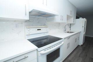 Photo 32: 367 Pinewind Road NE in Calgary: Pineridge Detached for sale : MLS®# A1094790