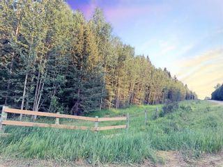 Photo 4: 31339 Rge Rd 55: Rural Mountain View County Land for sale : MLS®# A1136736