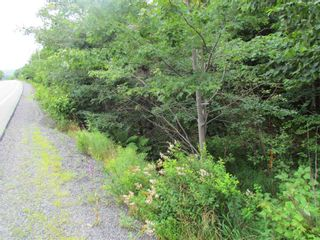 Photo 5: 22 3539 7 Highway in Lake Echo: 31-Lawrencetown, Lake Echo, Porters Lake Vacant Land for sale (Halifax-Dartmouth)  : MLS®# 202119499
