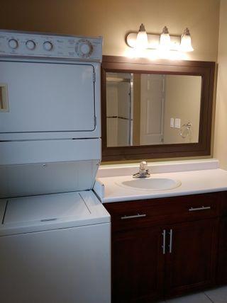 Photo 6: 7244 PIONEER Avenue: Agassiz Retail for sale : MLS®# C8032644