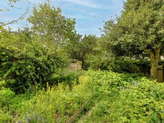 Photo 7: 410 Heather St in : Vi James Bay Land for sale (Victoria)  : MLS®# 876106