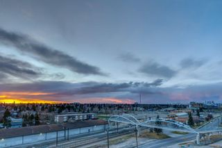 Photo 13: 717 8710 HORTON Road SW in Calgary: Haysboro Apartment for sale : MLS®# A1097461