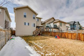 Photo 35: 134 Silverado Ponds Way SW in Calgary: Silverado Detached for sale : MLS®# A1089062