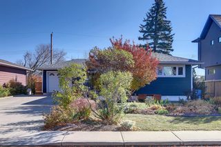 Main Photo: 56 Heston Street NW in Calgary: Highwood Detached for sale : MLS®# A1155675