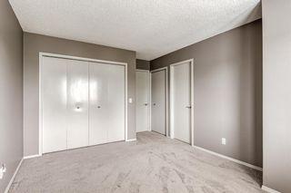 Photo 23: 39 Abbeydale Villas NE in Calgary: Abbeydale Row/Townhouse for sale : MLS®# A1149980