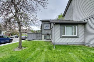 Photo 33: 49 12 Templewood Drive NE in Calgary: Temple Row/Townhouse for sale : MLS®# C4299149